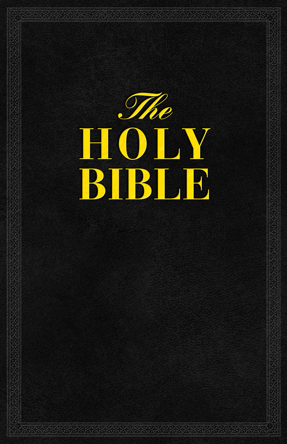 Book cover of The Holy Bible